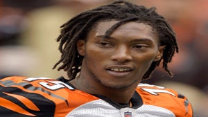 NFL Star Chris Henry Suffered From Brain Damage