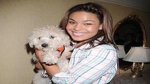 Star Gazing: Jordin Sparks' Dog Lives the Pup Life