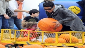 Stars Head to the Pumpkin Patch