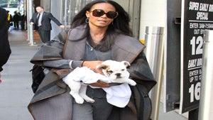 Star Gazing: Jada Pinkett Smith and Her Cute Puppy