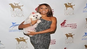 Star Gazing: Deborah Cox at the DogCatemy Celeb Gala