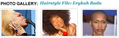 erykah_badu_hairstyle_file_launch_icon