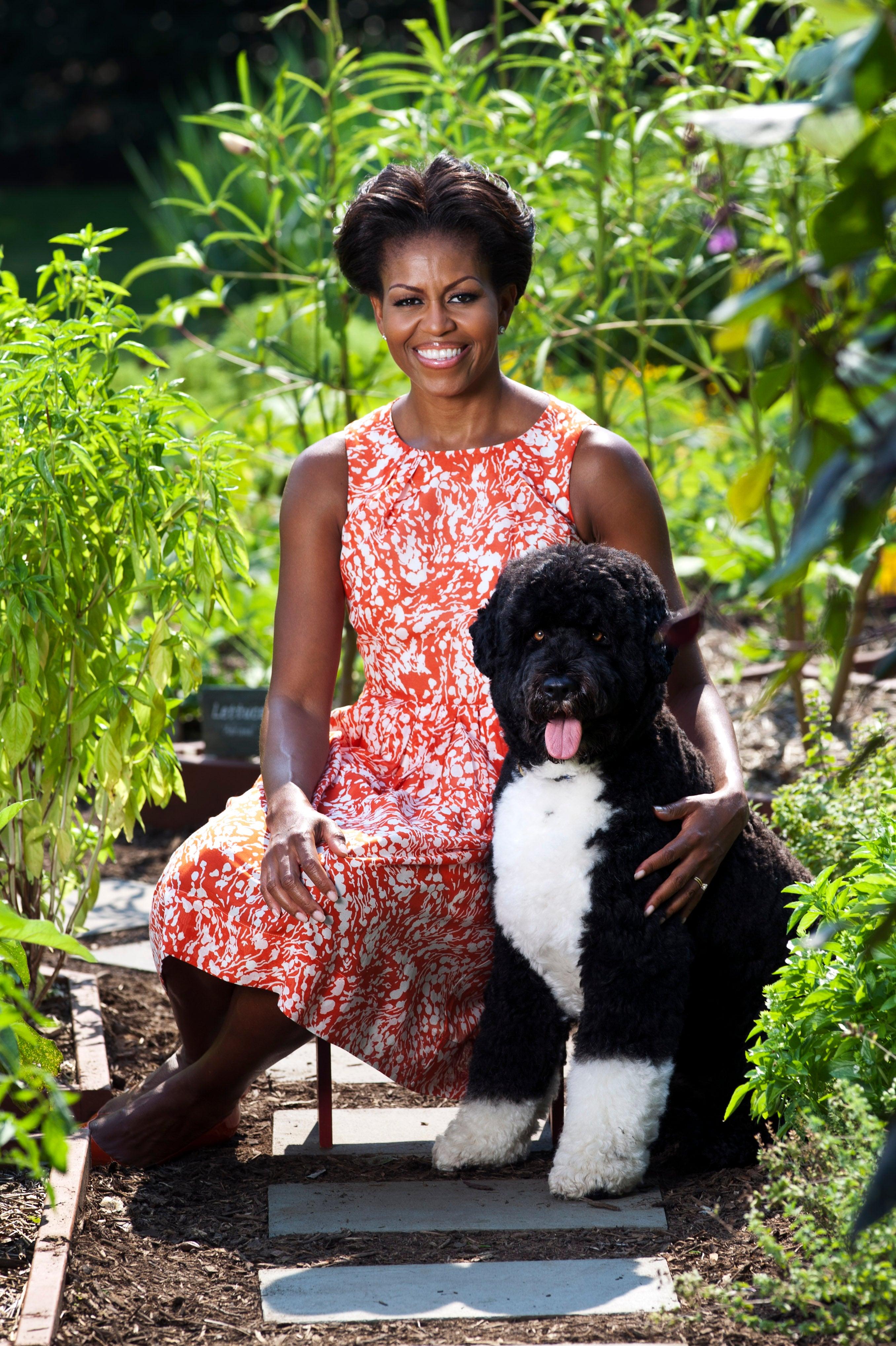 Michelle Obama and Bo Take New White House Portrait