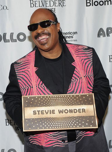 Stevie Wonder to Earn $1M for New Year's Eve Gig