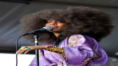 Hairstyle File: Erykah Badu's Natural Hair Evolution