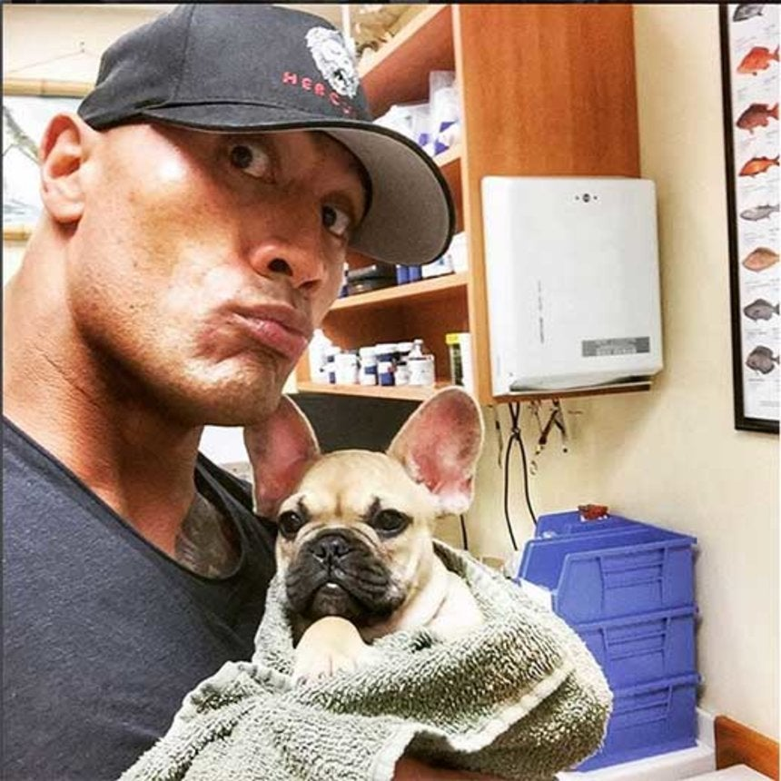 Must-See: Dwayne Johnson and His New Puppies Are The Cutest Thing Ever