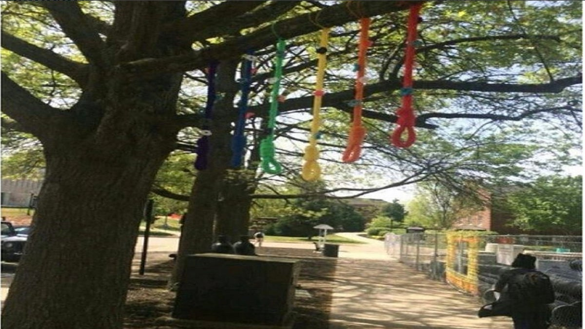 A Tennessee Art Student's Rainbow Noose Project Sparks Outrage