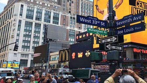 NYC Street Renamed 'Muhammad Ali Way'