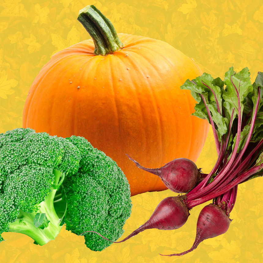 Calling All Foodies: These Are the 10 Best Fall Vegetables to Enjoy For the Season