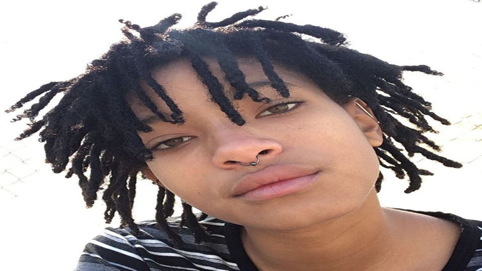 Willow Smith Fans Make 'Whip My Hair' Videos