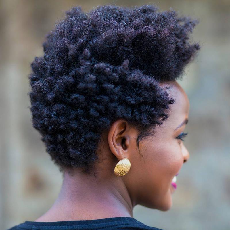 Remarkable Easy Hairstyles For 4C Hair Essence Schematic Wiring Diagrams Phreekkolirunnerswayorg