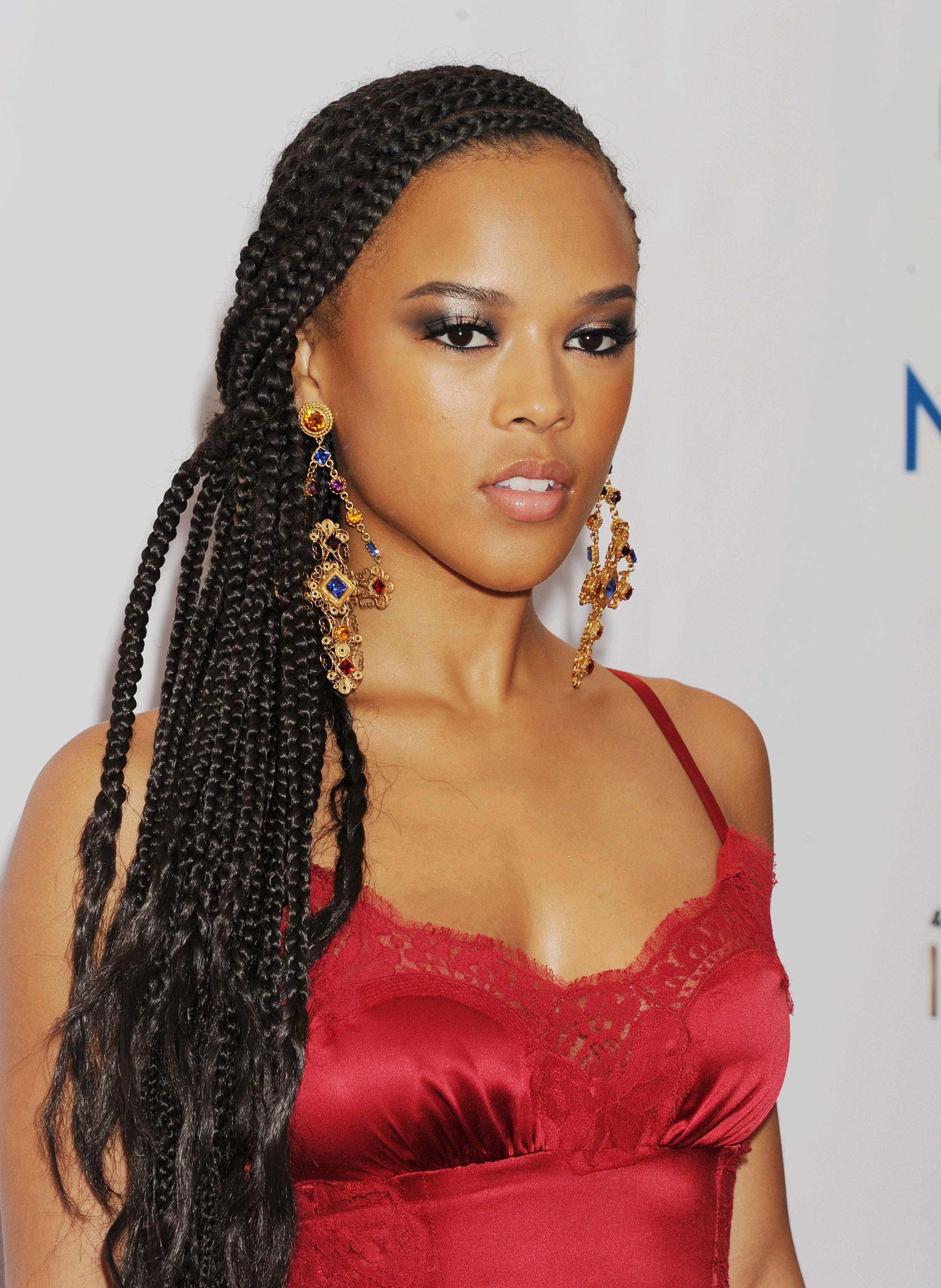 15 Black Braided Hairstyle Tutorials for 2019 ~ Hair Tutorials