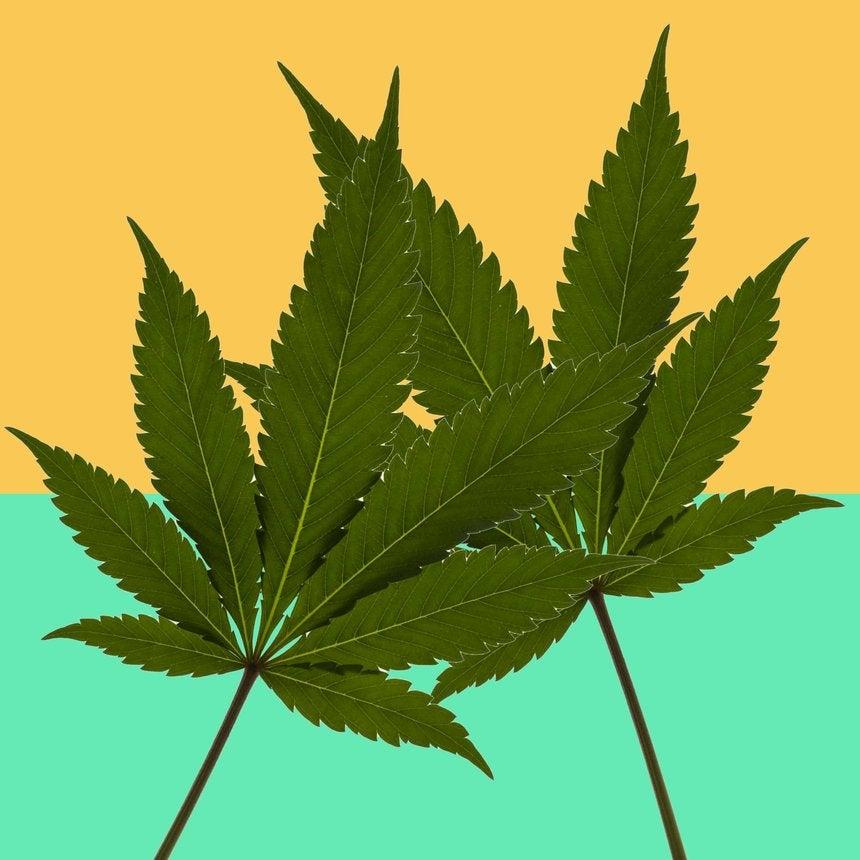 Atlanta City Council Votes ToDecriminalize Marijuana