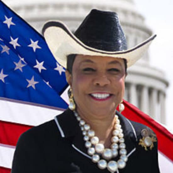 Rep. Frederica Wilson, Democratic Candidate For Florida's 24th Congressional District