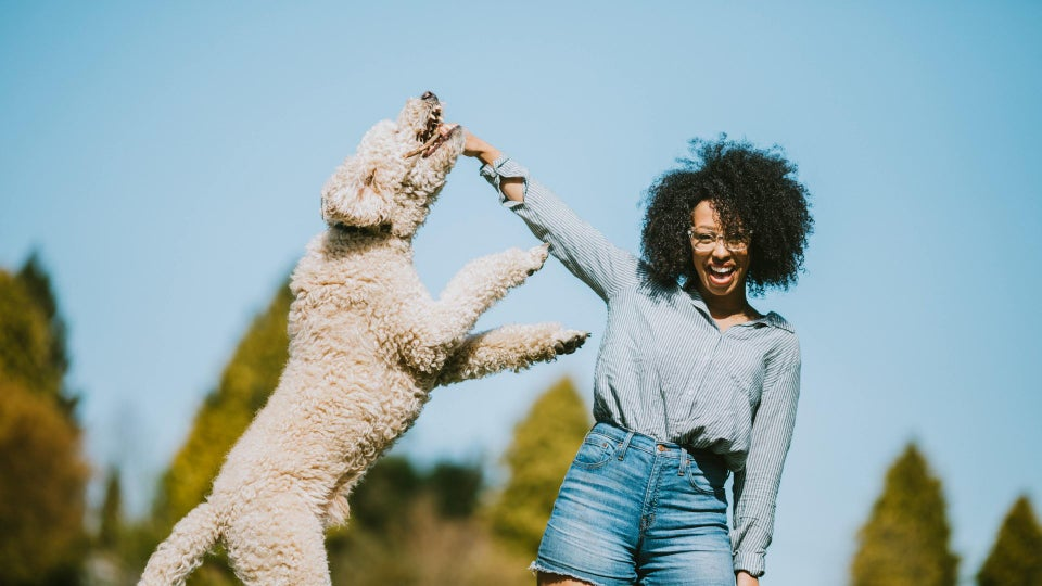 4 Great Pet-Friendly Vacations You Can Enjoy With Your Furry BFF