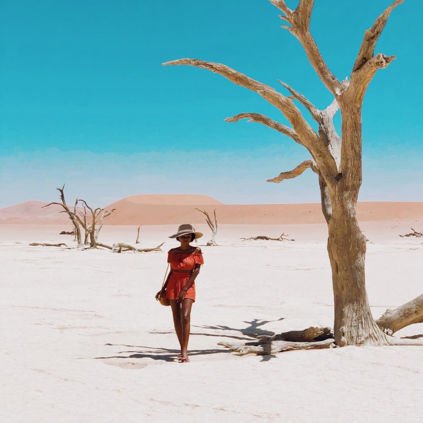 Black Travel Vibes: Lose Yourself in Namibia's Gorgeous White Sand Deserts