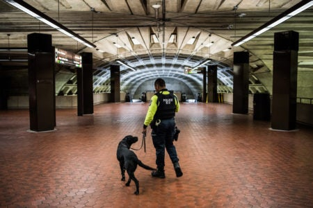 DC Metro Police Under Fire After Officer Shoves, Tases Black Man