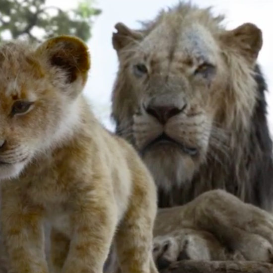 A Brand New 'Lion King' Trailer Shows Simba Fighting For His Destiny