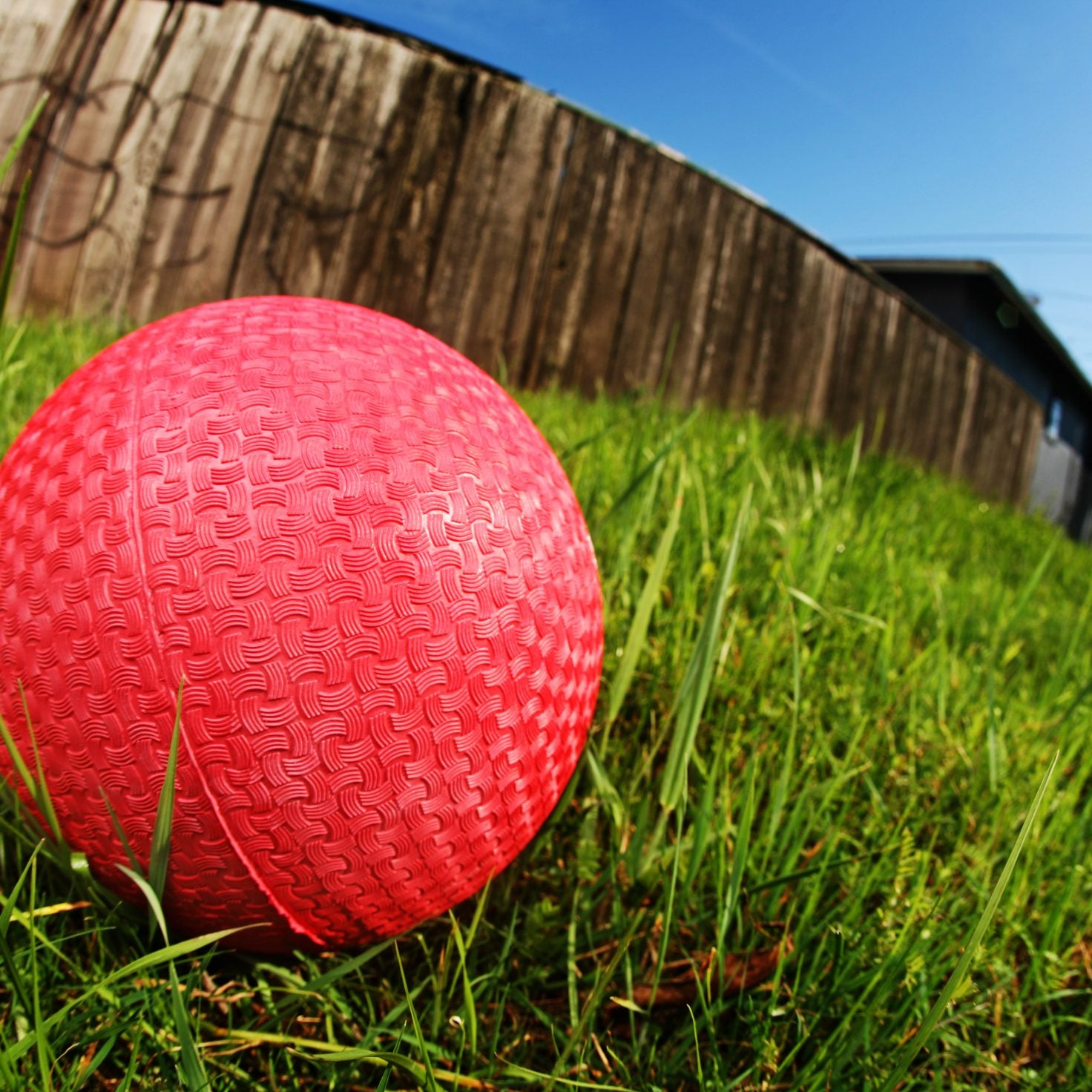 Prosecutors Dismiss Assault Charges Against 10-Year-Old In Dodgeball Case