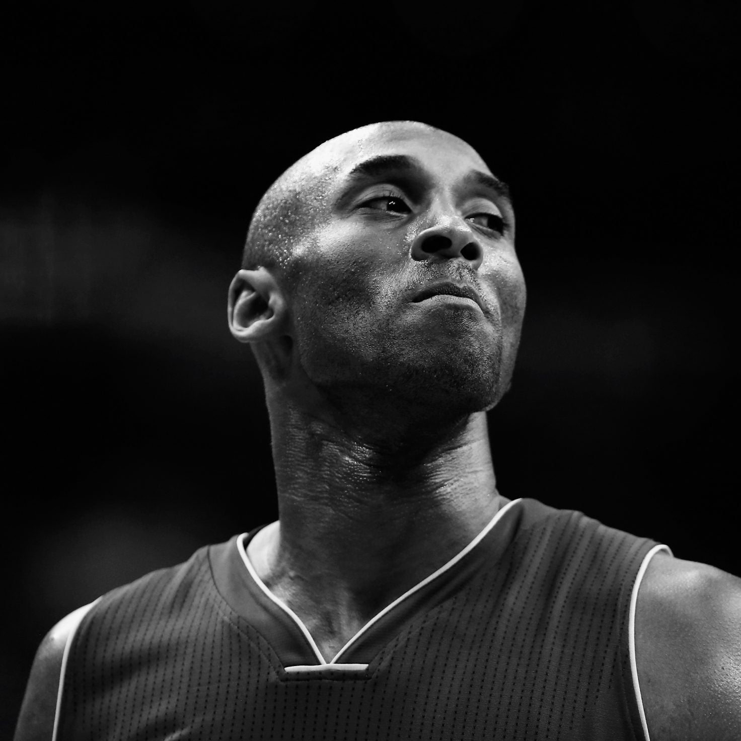 Celebrities Are In Shock After Kobe Bryant And His Daughter's Sudden Death In Helicopter Crash