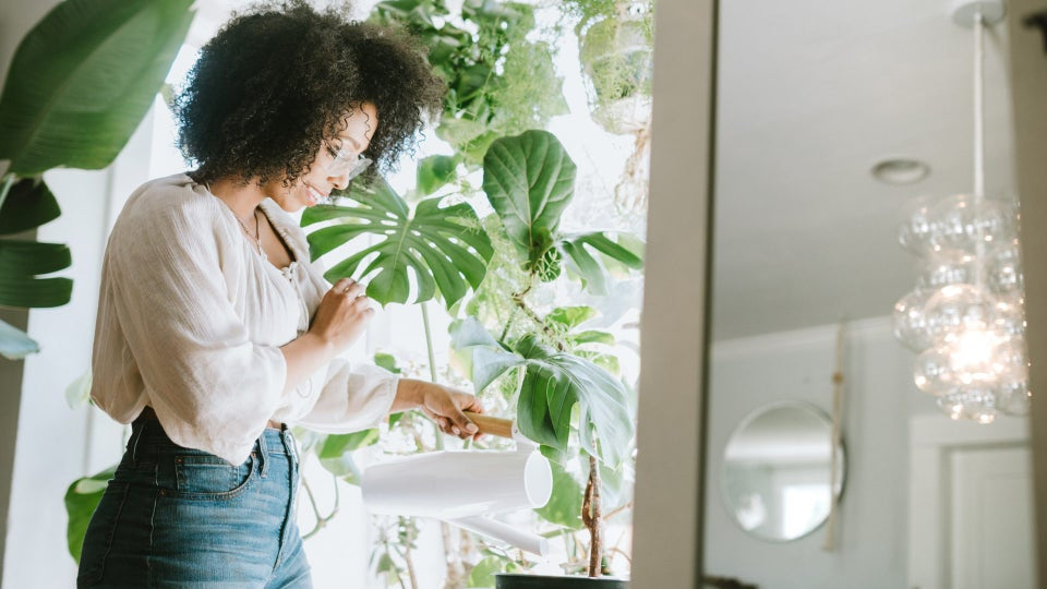 Keep Your Plants Alive With These Helpful Tips