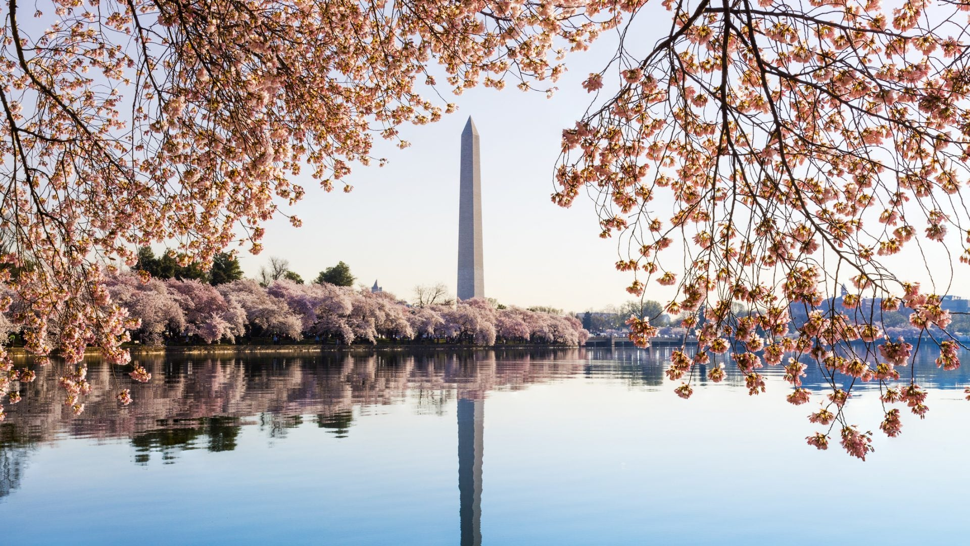 Celebrate Black History All Year Long At These Destinations