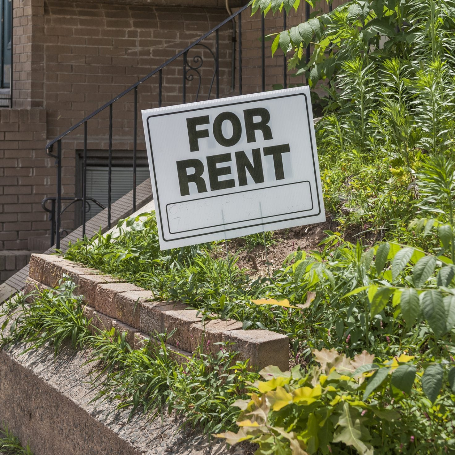 Rent Relief: Why I've Helped Give Money To Over 1,300 People During COVID-19