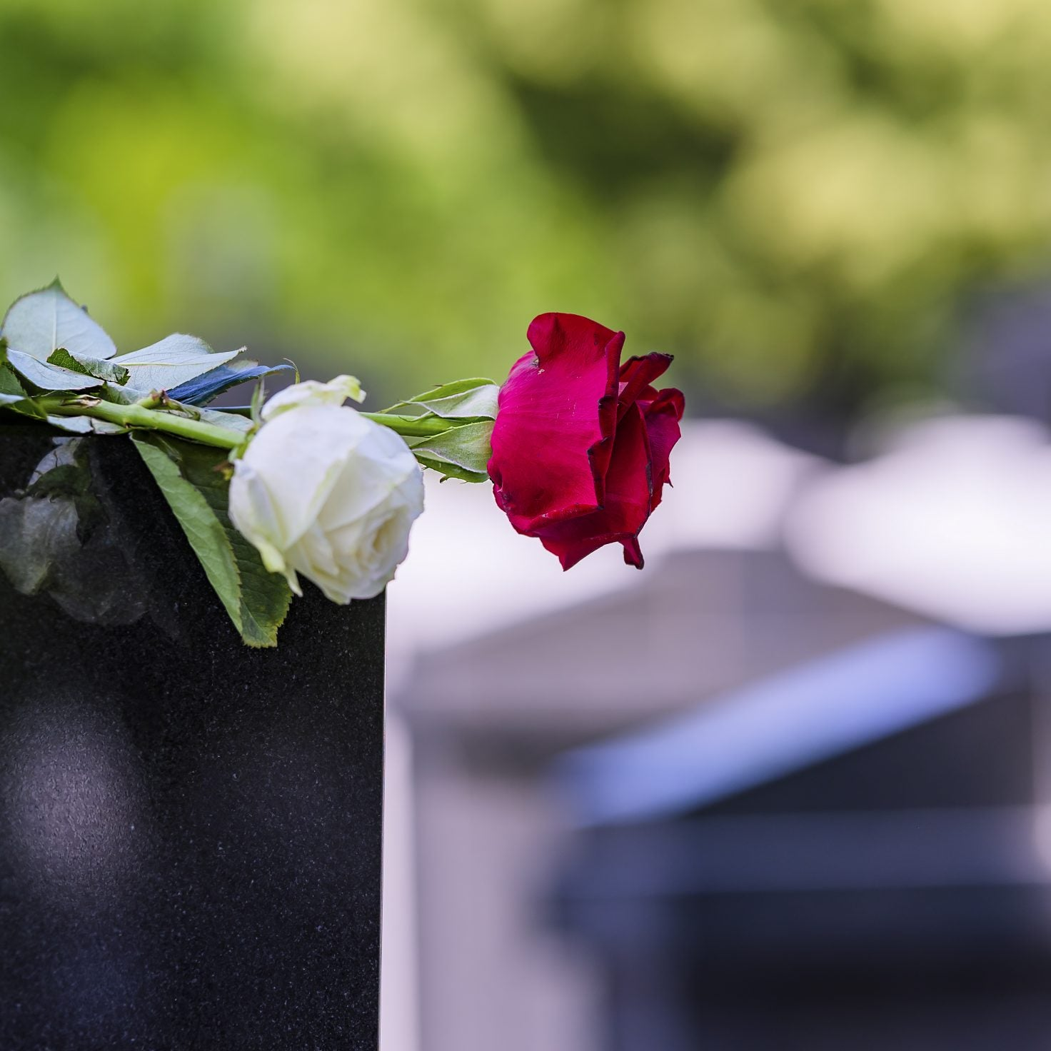 Six Dead Of Coronavirus After Attending Funeral In South Carolina