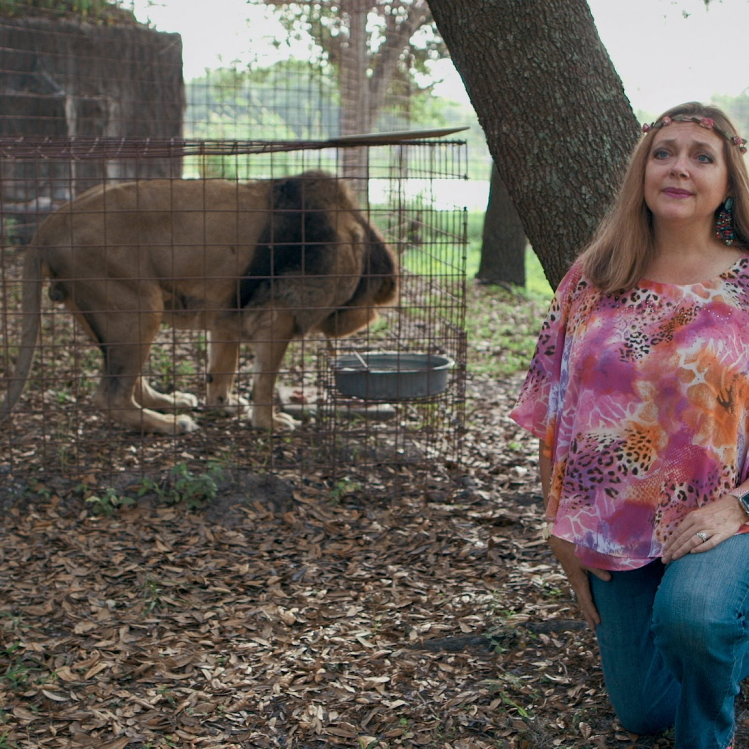 O.J. Simpson Thinks 'Tiger King's' Carole Baskin Murdered Her Husband