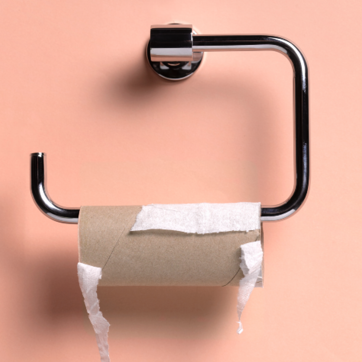 Out Of Toilet Paper? Try These Products Instead