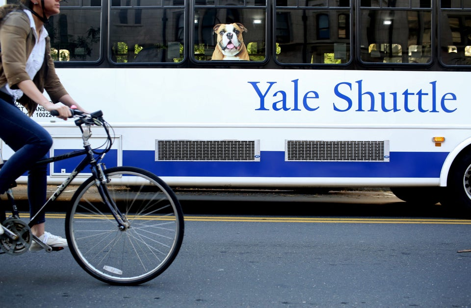 DOJ Says Yale Discriminates Against White And Asian-American Students