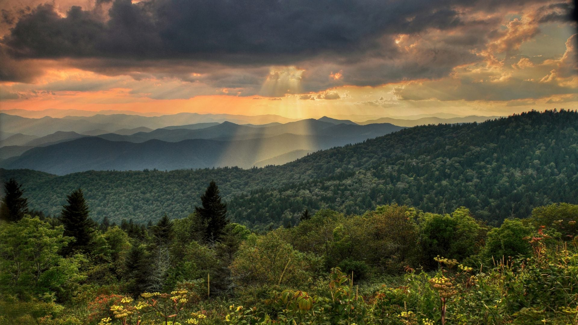Best Weekend Escapes Within Driving Distance From Atlanta