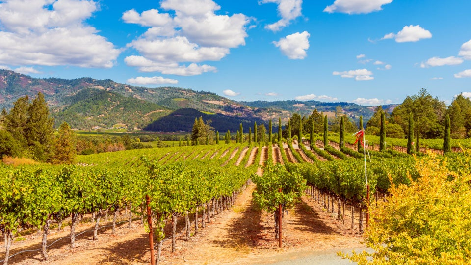 Get Lost: Spend A Wine Weekend In Napa Valley