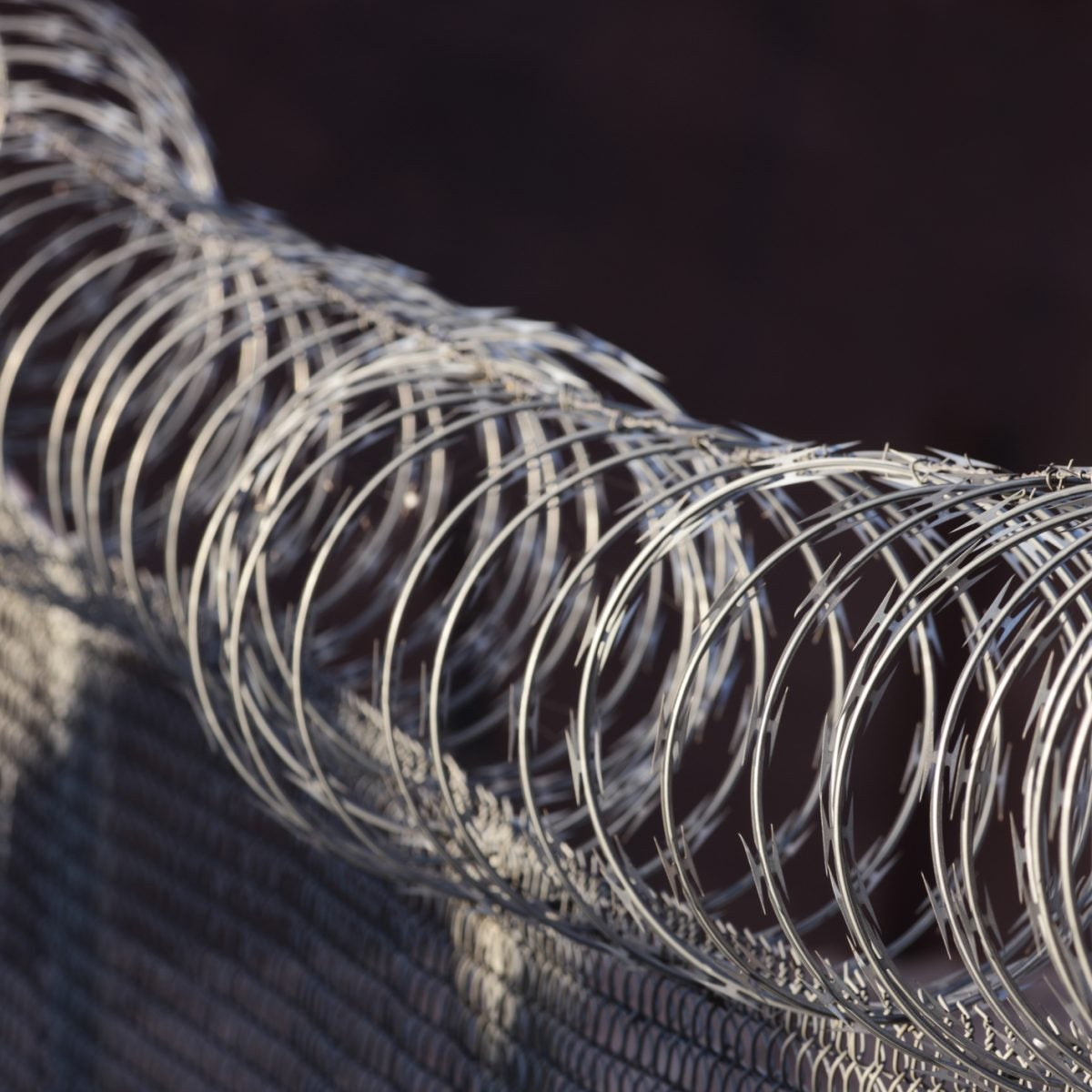 The Mississippi Appendectomies Of Today: Hysterectomies In ICE Detention Centers