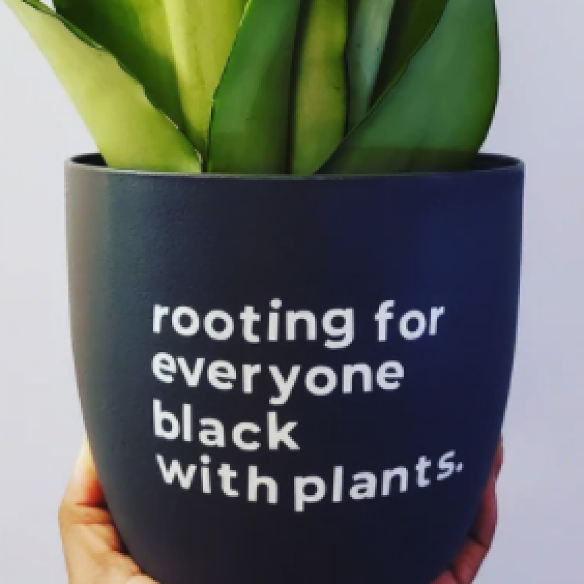 21 Sources For Black-Owned Plants and Products For Plant Lovers
