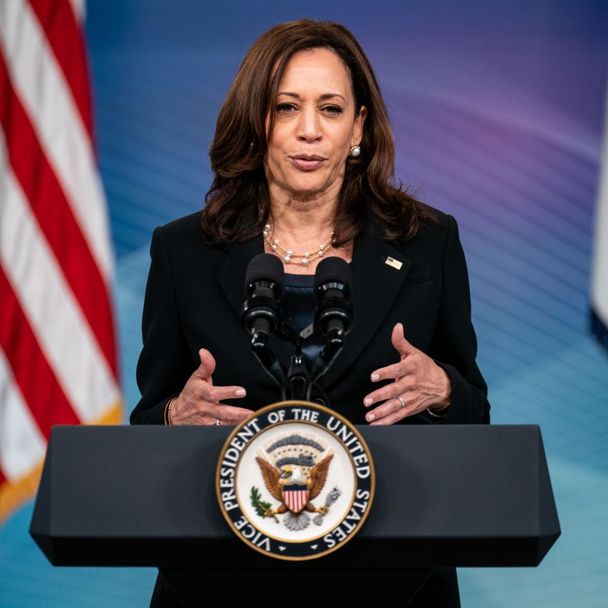 Vice President Kamala Harris to Lead White House Efforts to Protect Voting Rights