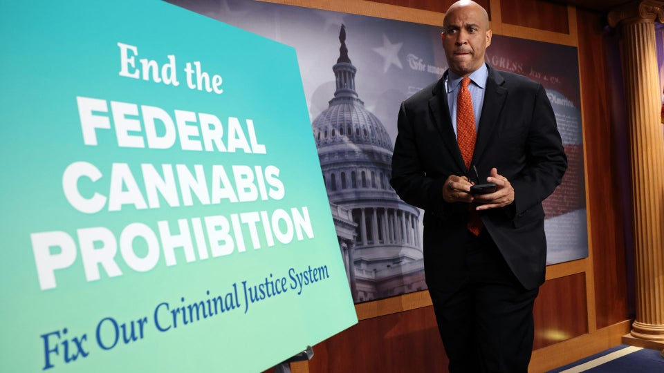 Democratic Senators Introduce Bill to Decriminalize Marijuana at the Federal Level