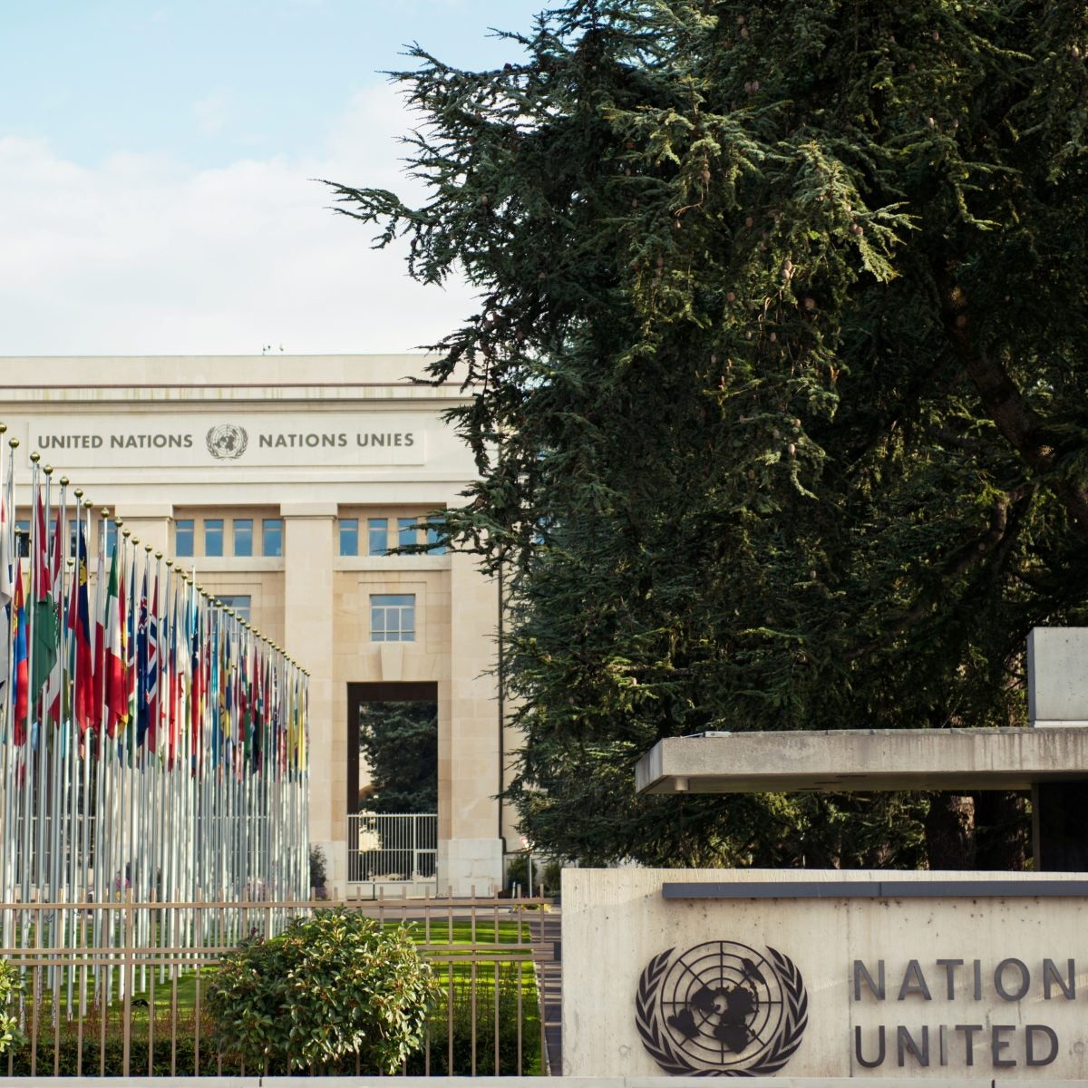 The U.S. invites United Nations to Visit After UN Report Highlights Country's Racial Injustice