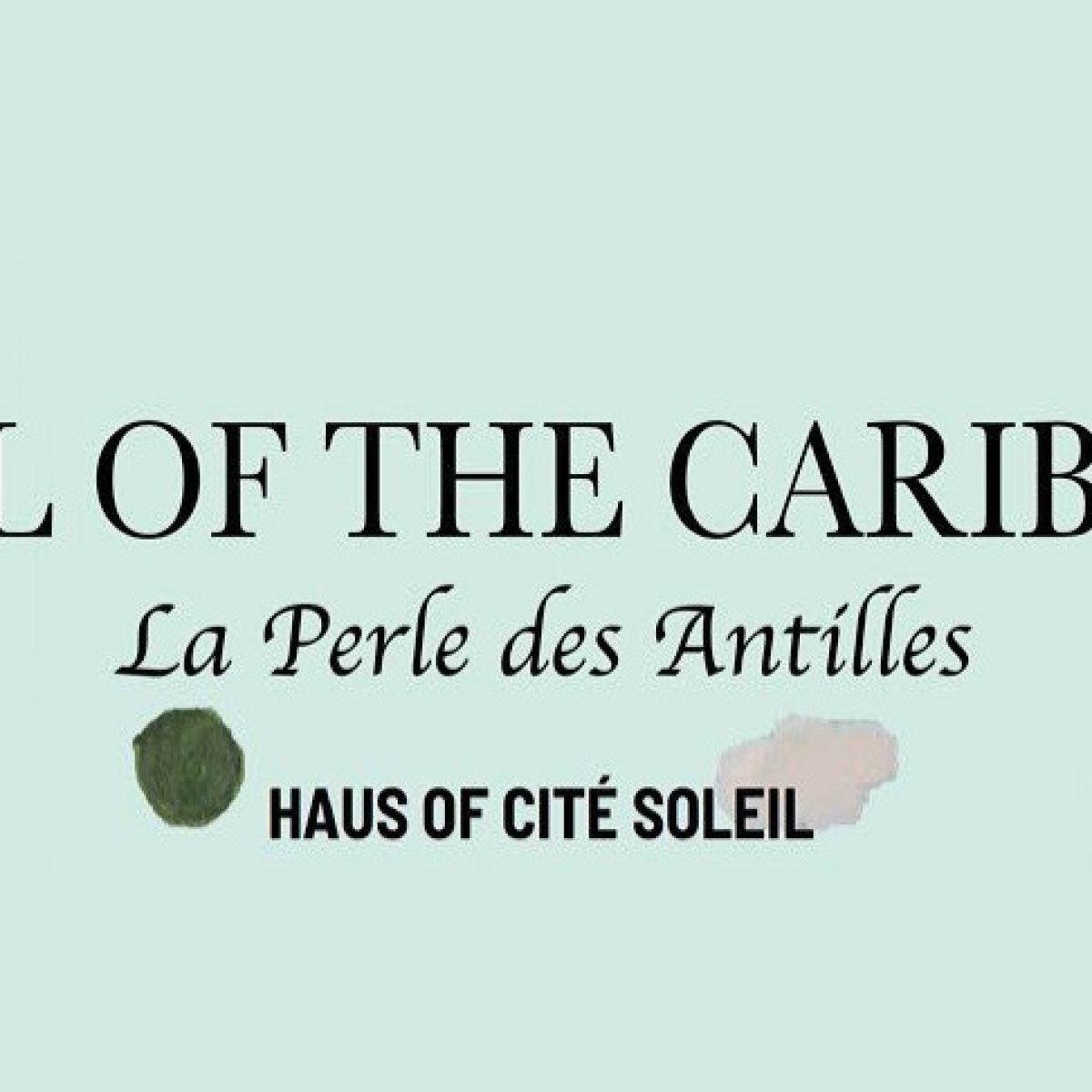 Black Fashion Fair And Haus Of Cité Soleil Team Up To Help Haiti
