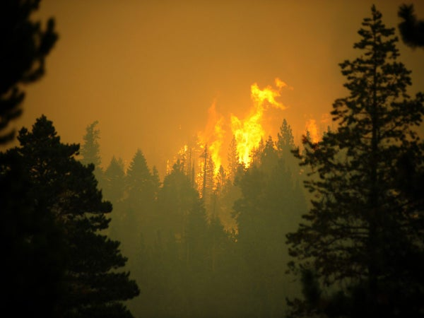 Caldor Wildfire Spreading to Lake Tahoe, Forces Mass Evacuations